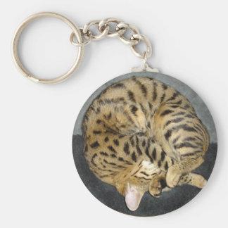 Porte - clé de chat de la savane porte-clé rond