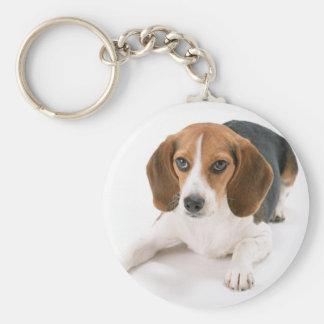 Porte - clé de chien de beagle porte-clé rond