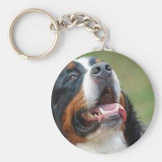 Porte - clé de chien de Berner Sennenhund Porte-clé Rond