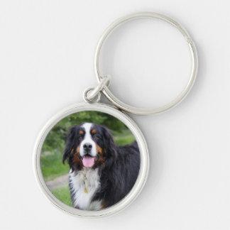 Porte - clé de chien de montagne de Bernese, idée Porte-clé Rond Argenté