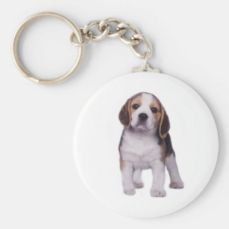 Porte - clé de chiot de beagle porte-clé rond