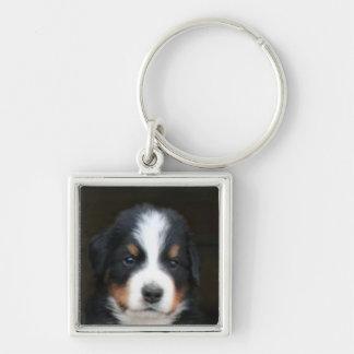 Porte - clé de chiot de chien de montagne de porte-clé carré argenté