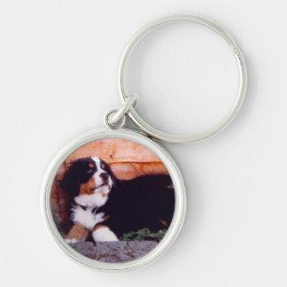 Porte - clé de chiot de chien de montagne de porte-clé rond argenté