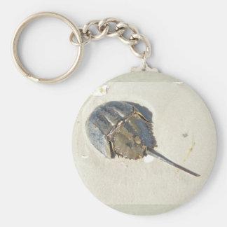 Porte - clé de crabe en fer à cheval porte-clé rond