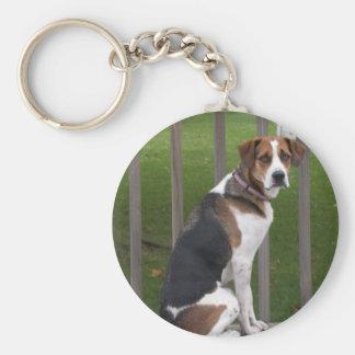 Porte - clé de fox-hound anglais porte-clé rond