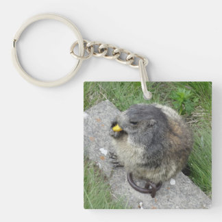Porte - clé de Marmot Porte-clé Carré En Acrylique Double Face