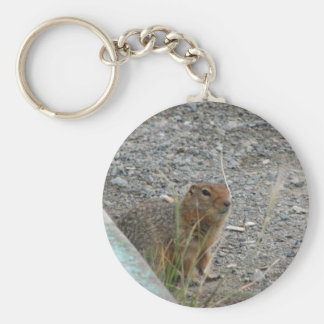Porte - clé de Marmot Porte-clé Rond