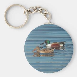 Porte - clé de natation de canards souchets du porte-clés