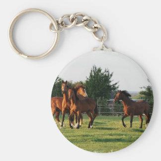 Porte - clé de rassemblement de cheval sauvage porte-clé rond