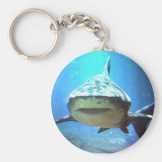 Porte - clé de requin porte-clefs