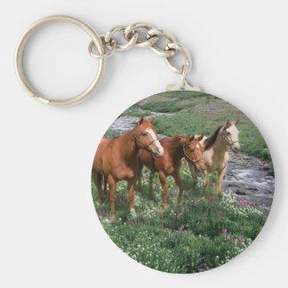 Porte - clé de trio de cheval porte-clé rond