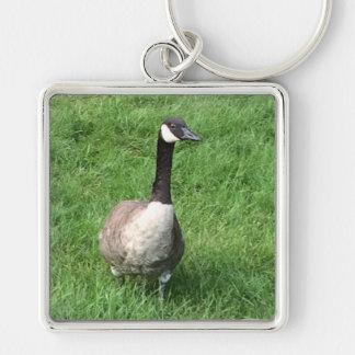 Porte - clé d'oie porte-clés