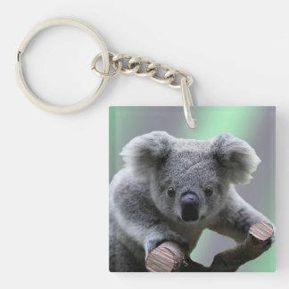 Porte - clé (double face) d'acrylique de koala porte-clé carré en acrylique double face