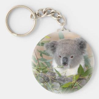 Porte - clé d'ours de koala porte-clefs