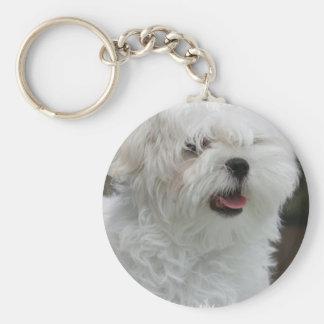 Porte - clé maltais blanc de chiot porte-clés