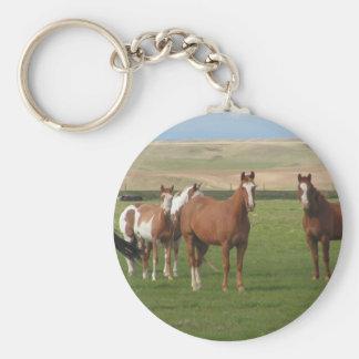 Porte - clé quart de troupeau de cheval porte-clé rond