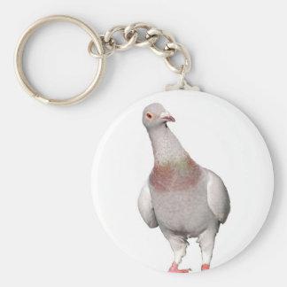 Porte-clefs avec pigeon voyageur curieux