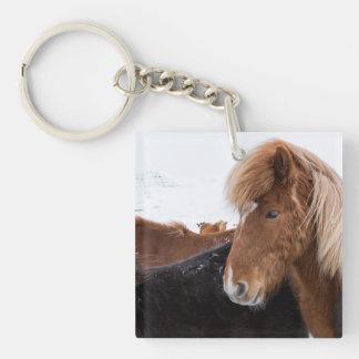 Porte-clefs Cheval islandais parmi le troupeau
