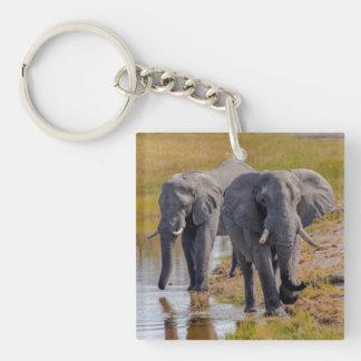 Porte-clefs Éléphants à un point d'eau
