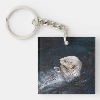 Porte-clefs Loutre mangeant le zoo sauvage aquatique de nature