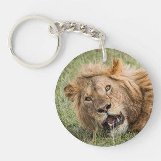 Porte-clefs Repos masculin de lion