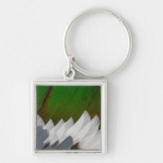 Porte-clés Abrégé sur coloré plume de canard