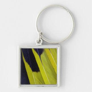 Porte-clés Abrégé sur jaune et noir plume