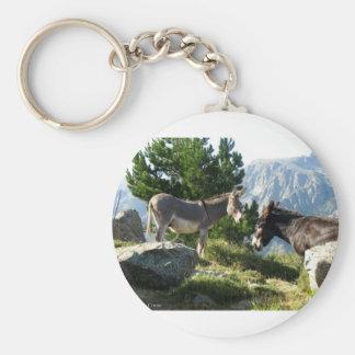 Porte-clés Ane de Corse