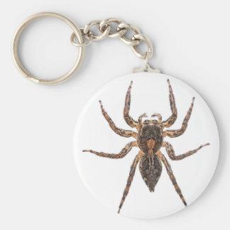 Porte-clés Araignée sautante Pantropical femelle
