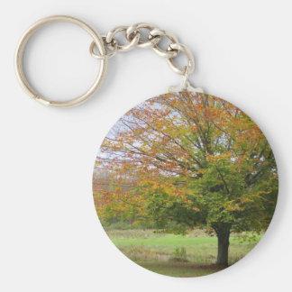 Porte-clés Arbre dans le porte - clé d'automne