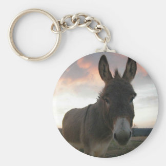 Porte-clés Art d'âne