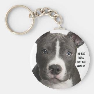 Porte-clés Aucuns chiens du mauvais. Juste mauvais porte -