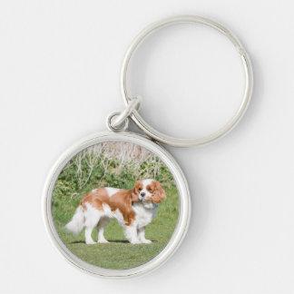 Porte-clés Belle photo du Roi Charles de chien cavalier