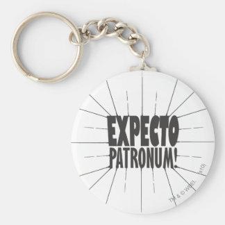Porte-clés Charme   Expecto Patronum de Harry Potter !