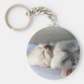 Porte-clés Chaton somnolent