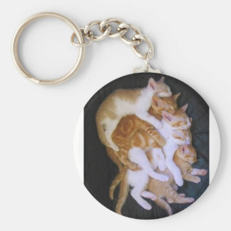 Porte-clés chats de caresse