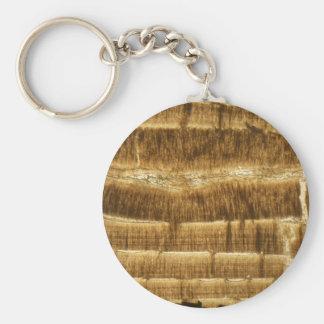 Porte-clés Chaux de Nummulite sous le microscope
