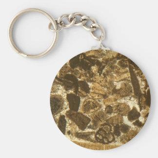 Porte-clés Chaux miocène sous le microscope