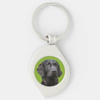 Porte-clés Chien enduit plat de chien d'arrêt, belle photo