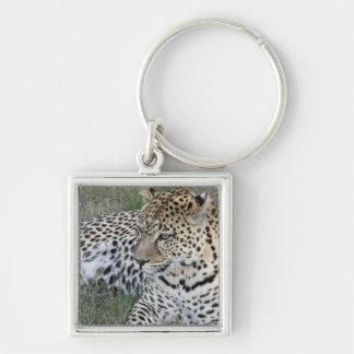 Porte-clés de léopard