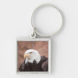 Porte-clés Eagle chauve - porte - clé