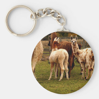 Porte-clés Famille de lama