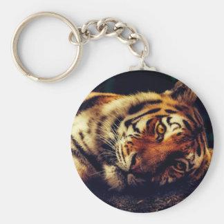 Porte-clés Faune animale de tigre reposant le macro plan