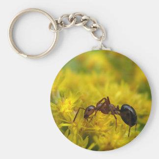 Porte-clés Fourmi minuscule sur l'or