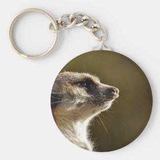 Porte-clés Fourrure de Tiergarten de zoo de nature animale de