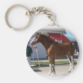 Porte-clés Frontière blanche de fillette d'exposition de