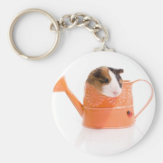 Porte-clés guinea pigs in a watering can