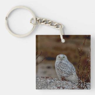 Porte-clés Hibou de Milou se reposant sur une roche