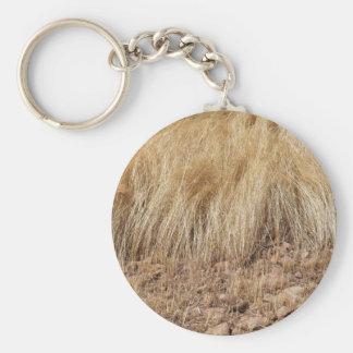 Porte-clés iDetail d'un champ de teff pendant la récolte
