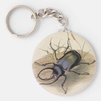 Porte-clés Insectes vintages et insectes, scarabée de